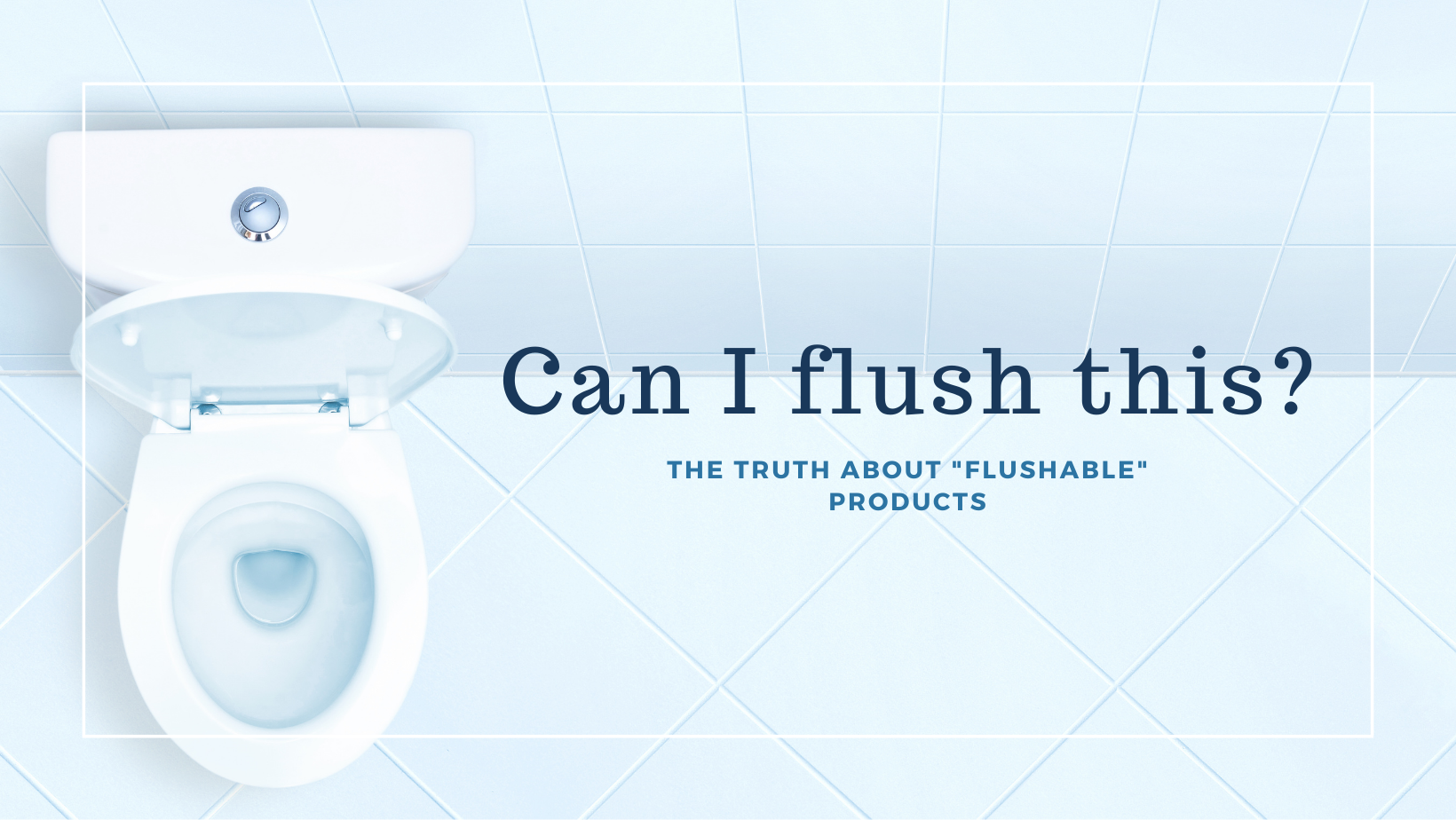 """Can I flush this? The Truth About """"Flushable"""" Products"""